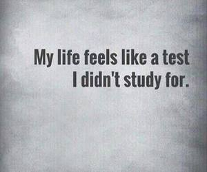 life, quote, and test image