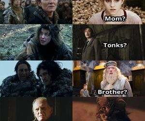harry potter, game of thrones, and funny image