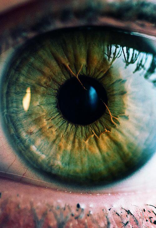 beautiful, eye, and green image