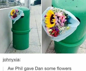 dan and phil and phan image