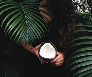coconut, green, and tropical image