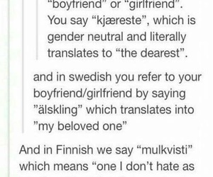 bilingual, finnish, and funny image