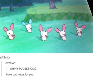 funny, pokemon, and tumblr image