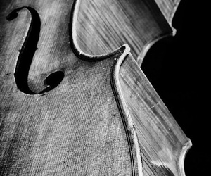 black and white, music, and cello image