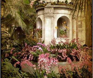 flowers, garden, and architecture image