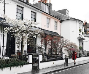 city, london, and tree image