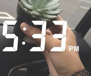 grunge, alternative, and succulents image