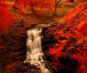 autumn, long exposure, and waterfall image