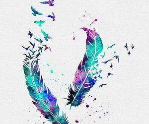 birds, colors, and feather image