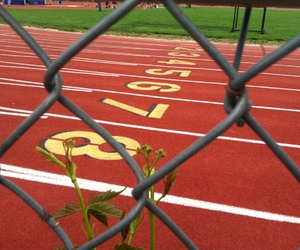 run, track, and track & field image