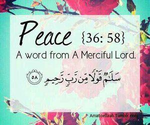 allah, peace, and islam image