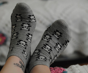 socks, panda, and cute image