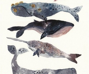 whale, art, and watercolor image