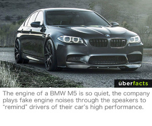 bmw, car, and funny image