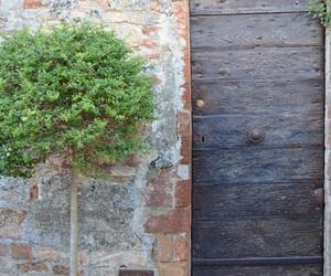 door, old, and garden image