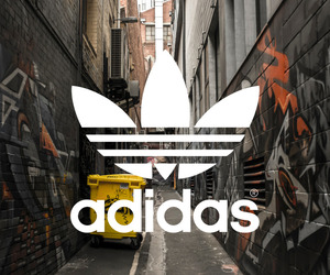 adidas, street, and white image