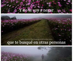 frases, desamor, and español image
