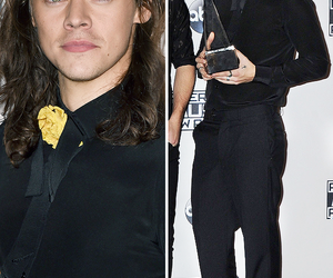 harry and styles image