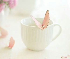 butterfly, pink, and cup image
