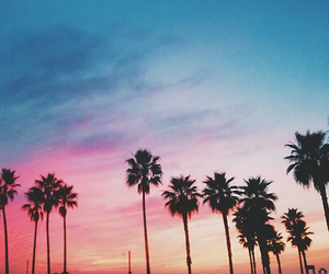 summer, sky, and sunset image