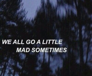 mad, grunge, and quotes image