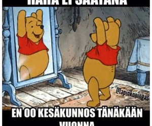 finland, funny, and winnie the pooh image
