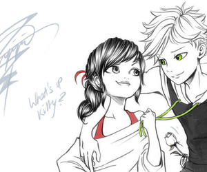 Adrien, marinette, and chatnoir image