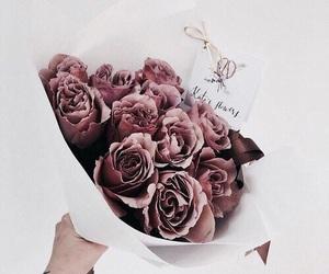 белый, фото, and цветы image