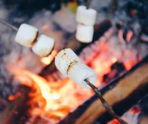еда, природа, and огонь image