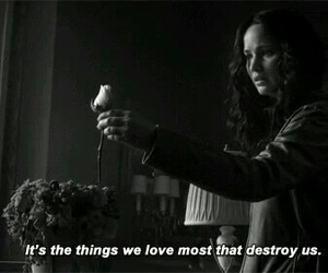quote, hunger games, and mockingjay image