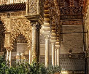 gold, dorne, and Sunny image