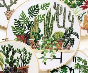 plants, boho, and cactus image