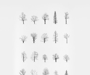 wallpaper, trees, and white image