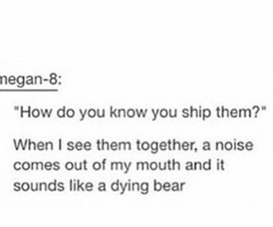funny, otp, and ship image