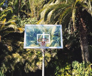 Basketball, summer, and sport image