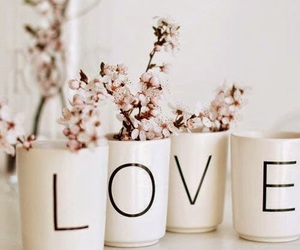 love, flowers, and white image