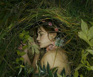 forest and sleeping image