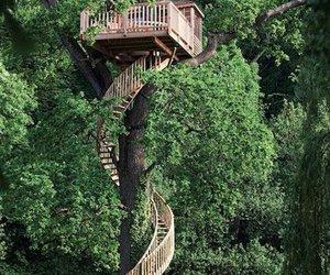 tree, house, and tree house image