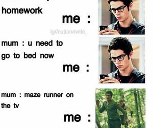 run, the maze runner, and tmr image