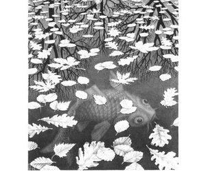 art, escher, and MC Escher image