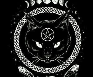 cat, black, and moon image