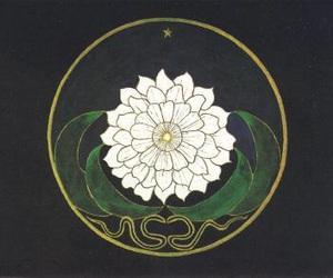 flowers, art, and mandala image