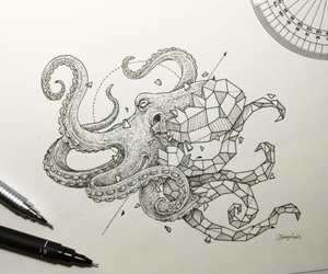 art, octopus, and drawing image