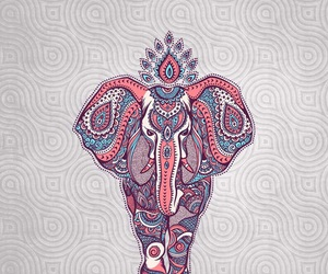 wallpaper, elephant, and animal image