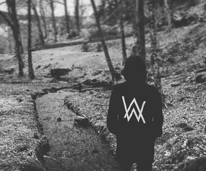 dj and alan walker image