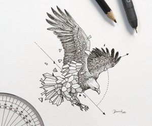 art, eagle, and drawing image