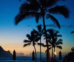 summer, beach, and light image