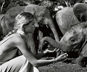 girl, animal, and black and white image