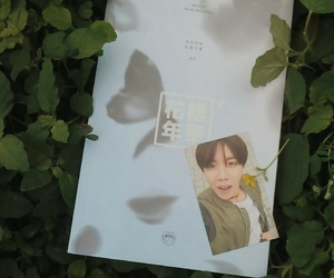 kpop, nature, and bts image