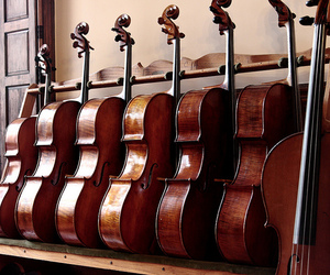 classical, music, and instrument image